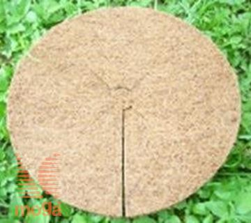 Slika Kokosov disk