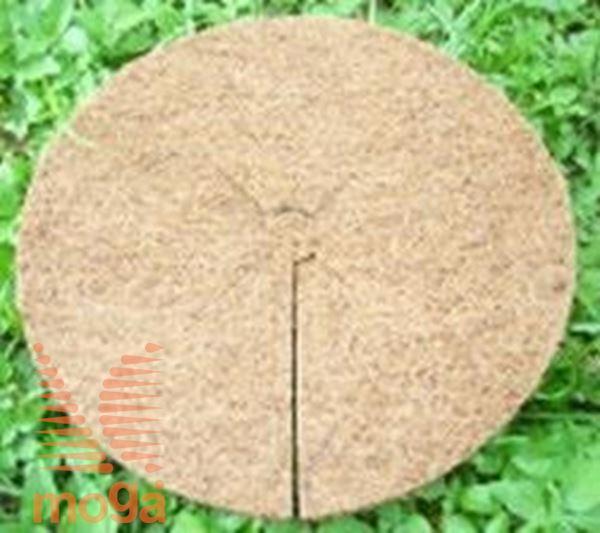 Kokosov disk