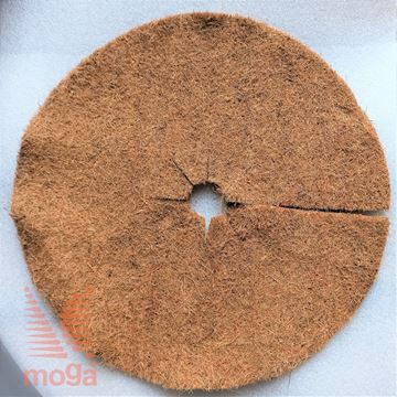 Picture of Kokosov disk
