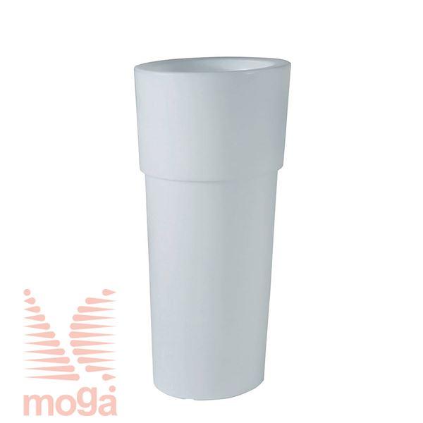 Lonec Aquila Alba - okrogel |Bela|FI: 38,5/29,5 cm x V: 80/24 cm|