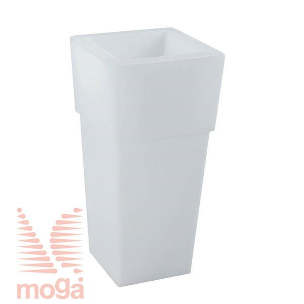 Lonec Aquila Alba - kvadraten |Bela|D: 48/37 cm x Š: 48/37 cm x V: 100/29,5 cm|