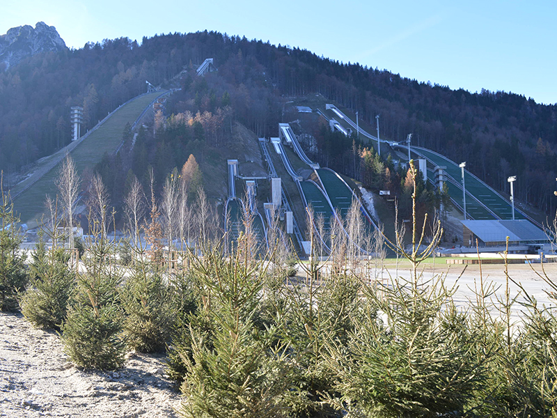 Planica – Planting and Arrangement