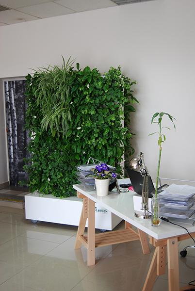 gr ne w nde vrtni center moga. Black Bedroom Furniture Sets. Home Design Ideas
